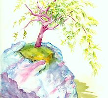 Bonsai Tree by Pauline Persing