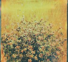 Burning Red Clover by Jill Auville