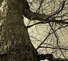 Frankenstein by Nella Khanis