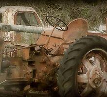Rusty Boneyard by Trish Moore
