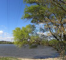 Danube river_landscape with high power line_Hungary2011APR by ambrusz