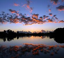 Reflected Sky - Nature's Paintbrush At Work by stevealder