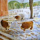 vermont cows by Brian Degnon