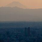 Mt Fuji says Good Night by hermez