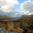Kerry National Park by Martina Fagan