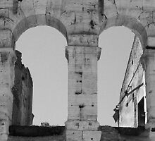 The Roman Colosseum - View #3 by Tamara  Kaylor