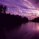 Purple Sunset by Samantha Higgs