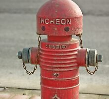 The INCHEON red hydrant robots by dansLesprit