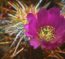 Enchanted Bloom by IreKire