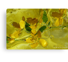 Floral with oil and water Canvas Print