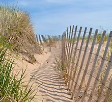 Sandy Dune by mmilway