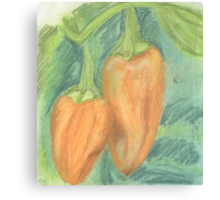 Two Orange Peppers Canvas Print