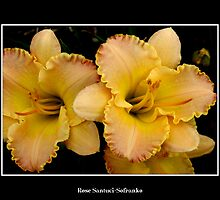 Lilies: Yellow #2 by Rose Santuci-Sofranko