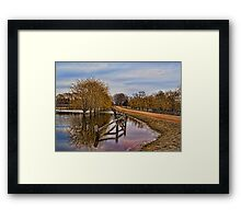 Willows in The Water Framed Print
