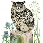 Eagle Owl with Thistles by Maureen Sparling