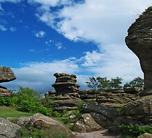 At Brimham Rocks by WatscapePhoto