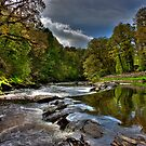 The Roe River by Neil Carey
