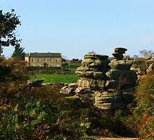 Brimham Rocks ~ Nature's & Man's by artwhiz47