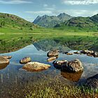 Summer at Blea Tarn by VoluntaryRanger