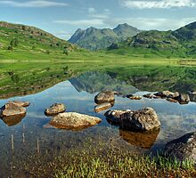 Summer at Blea Tarn by Jamie  Green