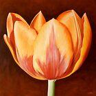 Tulip by Klaus Boekhoff