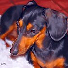 Dachshund Art Prints from Painting by Iain McDonald