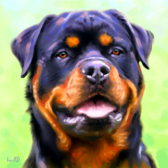 Rottweiler Art Prints from Painting by Iain McDonald
