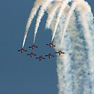 Spring=Snowbirds by Al Williscroft