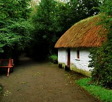 thatched cottage.. by Michelle McMahon