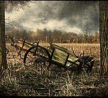 Desecrate by Karri Klawiter