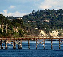 Goleta Beach Pier by Scott Switzer