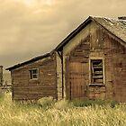 Abandoned  by Nick Boren