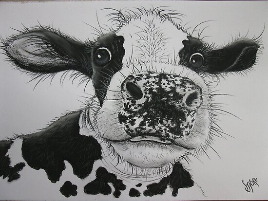 Anyone for Milk? by Sally Ford
