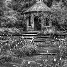 Mountstewart Gardens by Jonny Andrews