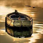 The little golden boat by doux-amer