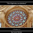 Stained Glass Window at St. Joseph&#x27;s Cathedral by Rose Santuci-Sofranko
