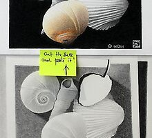 Cut the shell and paste it. by Michele Filoscia
