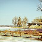 Along the Shores of Oneida Lake by cnysmile