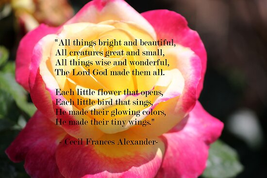 All Things Bright and Beautiful by DebbieCHayes