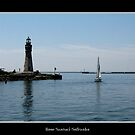 Buffalo Main Lighthouse &amp; Sailboat by Rose Santuci-Sofranko