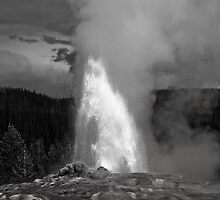 Old Faithful 3 by Alex Preiss