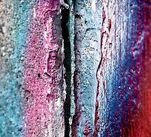 Conscious Divide by Sabin Orr