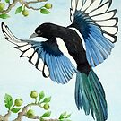 A Magpie in flight by aquartistic