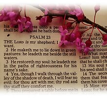 23rd Psalm by Mattie Bryant