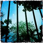 Through these bars by robigeehk
