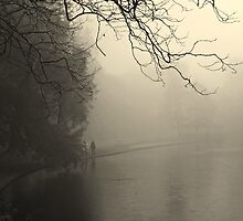Fog at St Stephen's Green by Esther  Moliné