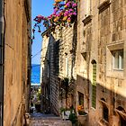 Bougainvilleas in a Korčula Alleyway by Tom Gomez