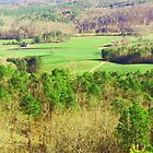 Down In the Valley (Backside View from Cheaha by Charldia