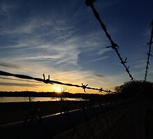 Barbed Sunset by Mully410