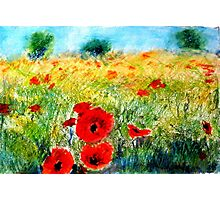 Adam Pearson's 'Poppy Field' Photographic Print